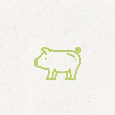 Bio Schweinefleisch
